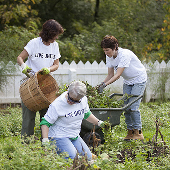 Lehigh employees volunteer in the community during the annual Day of Caring.